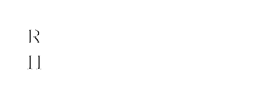 Rochkill Insurance Group